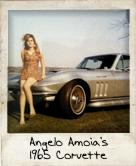 Photo Of Angelo Amoia's 1965 Corvette