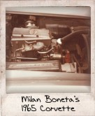 Photo Of Milan Bonita's 1965 Corvette